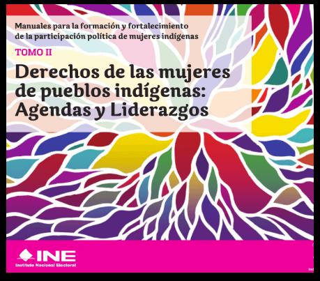 Manuales para la formación y fortalecimiento de la participación política de mujeres indigenas. Tomo II